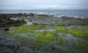 Una playa en el Cantábrico fotografiada con la cámara Fujifilm X-pro1, si pulsas imagen podrás conocer todas sus características. Fujifilm nos acompaña en el viaje. Podréis ver el resultado en el informe Destrucción a Toda Costa 2013 de Greenpeace.