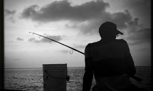 la pesca de delfines