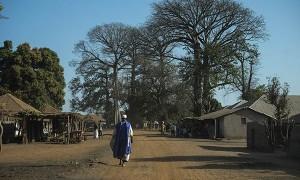 20140122-GUINEA BISSAU-SISSACUNDA-SEGURIDAD ALIMENTARIA-0106A
