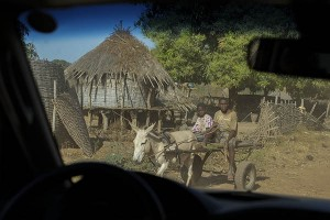 20140122-GUINEA BISSAU-SISSACUNDA-SEGURIDAD ALIMENTARIA-0145A