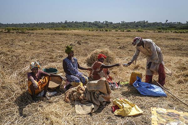 Un grupo de agricultores descansa durante una jornada agrícola tradicional en Guinea Bissau.