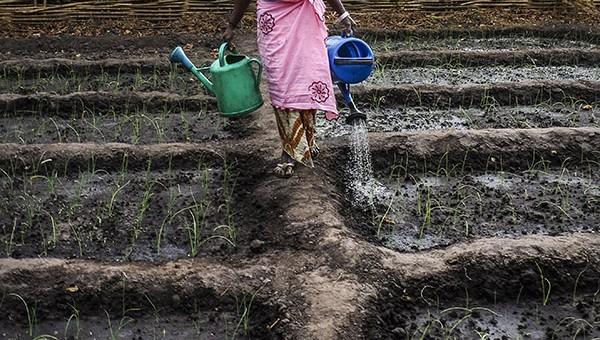 20140125-GUINEA BISSAU-YAYA-0906