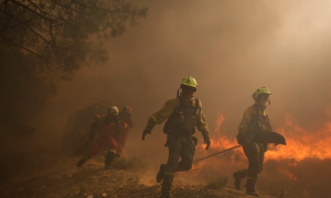 SPAIN-FOREST FIRE- CASTROCONTRIGO-01