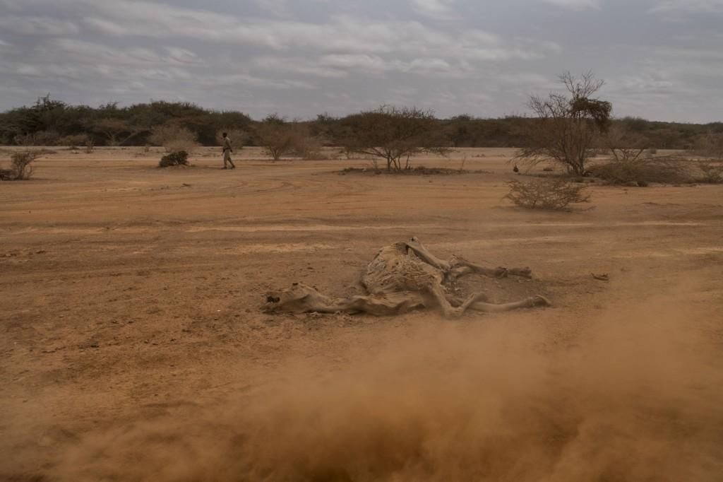 20170704_SOMALIA_SAVE_HAMBRUNA_0417